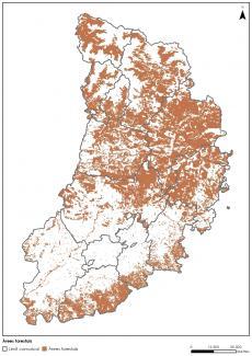 Acabats els estudis de camp i l'anàlisi d'alternatives de localització d'una planta pilot d'una biorefineria basada en la fusta