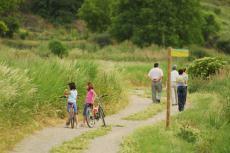 Com convertir un establiment rural en ecoturístic?