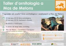 Taller d'ornitologia a Mas de Melons