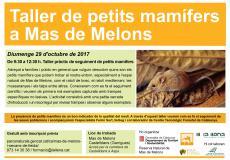 Taller de petits mamífers a Mas de Melons