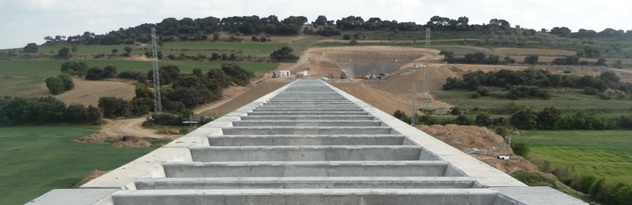 Seguiment ambiental del projecte de concentració parcel·lària i del canal Segarra-Garrigues al TM de Tàrrega