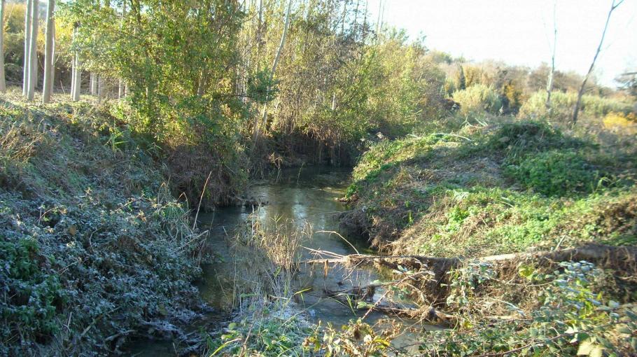 Recuperación fluvial del río Sió a su paso por Butsénit de Montgai