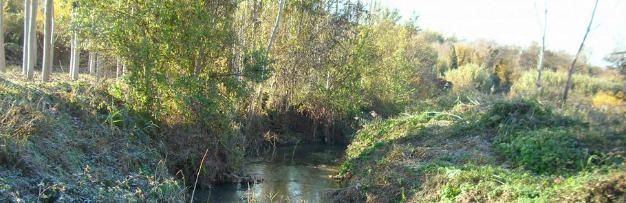Recuperació fluvial del riu Sió al seu pas per Butsènit de Montgai