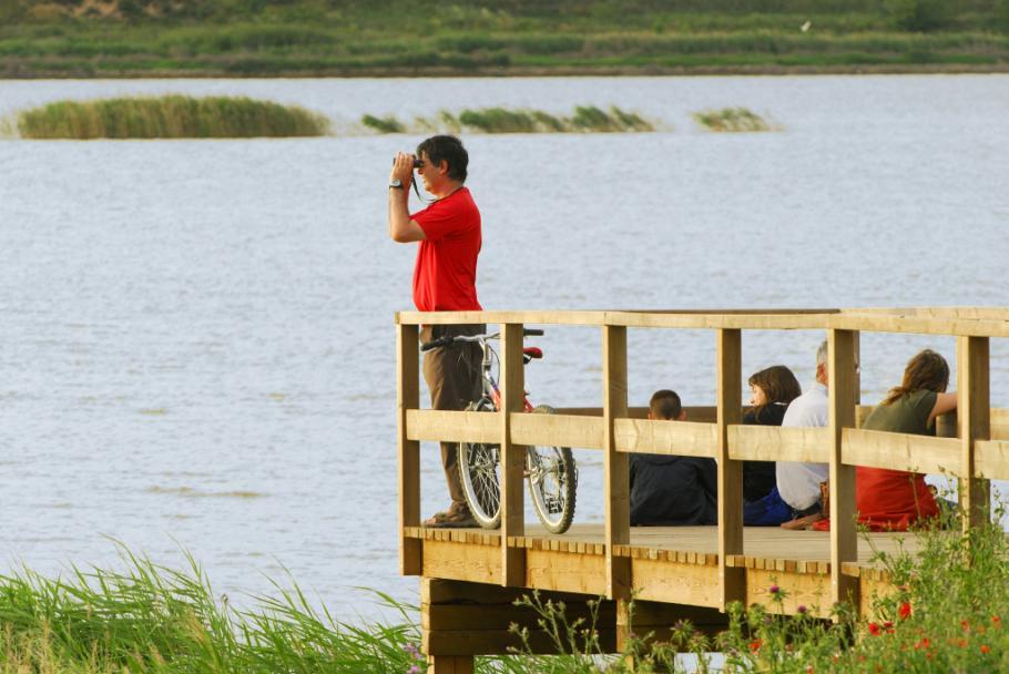 Coordinación técnica del Consorcio del estanque de Ivars i Vila-sana
