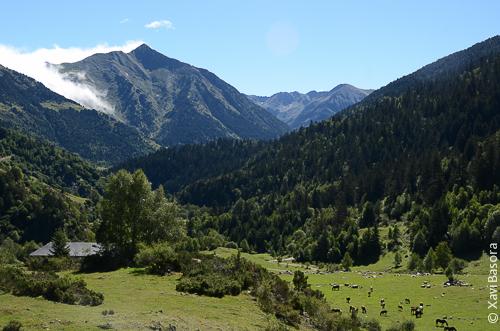 Memòria justificativa d'ampliació del Parc Natural de l'Alt Pirineu