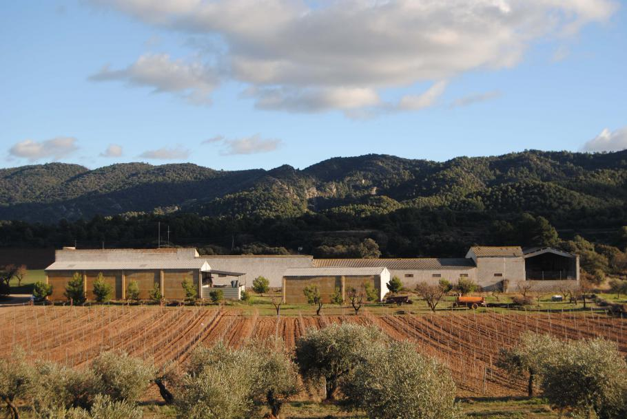 Estudi d'impacte i integració paisatgística d'un magatzem agrícola a la Pobla de Cèrvoles