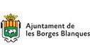 Seguiment ambiental del projecte de concentració parcel·lària i del canal Segarra-Garrigues al TM de Les Borges Blanques